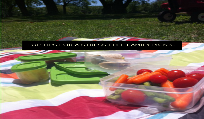 Top tips for a stress-free family picnic