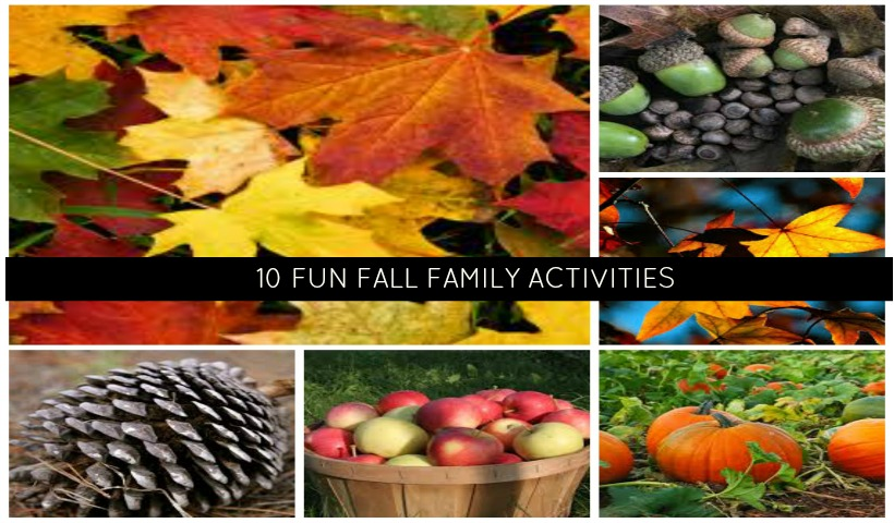 10 Fun Fall Family Activities